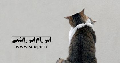"""Résultat de recherche d'images pour """"اس ام اس آشتی"""""""